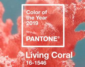 珊瑚色:PANTONE(潘通)发布2019年度代表流行色