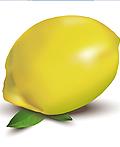 Illustrator教程:绘制仿真柠檬