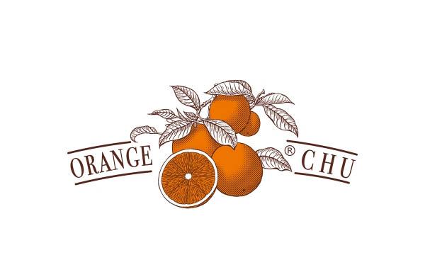 获红点奖的褚橙品牌包装设计