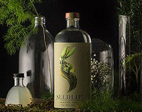 精美的Seedlip植物草药饮料包装设计欣赏