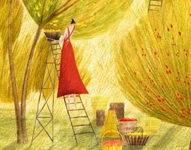 用细腻的线条和纹理描绘大自然,英国插画师Rosanna Tasker插画欣赏