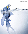 30个创造性的全球变暖海报设计