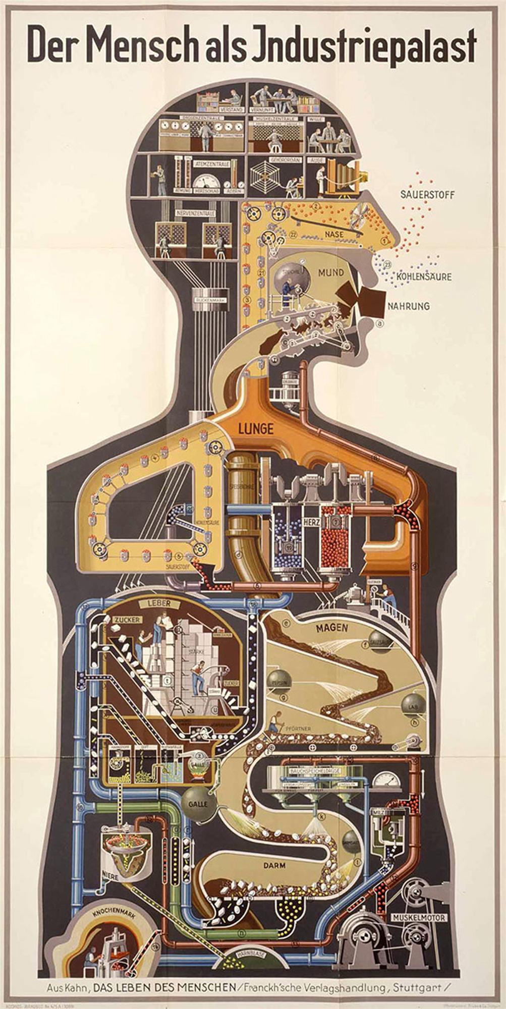 信息图形化设计海报
