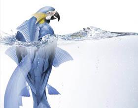 36幅创意全球变暖海报设计