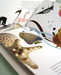 国外精美创意画册设计(二)