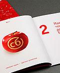 SB银行年度报告画册设计
