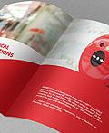 埃及LARP公司宣传画册设计欣赏