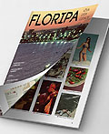 Floripa杂志版式设计
