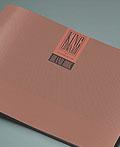 品牌视觉设计手册(2)