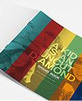 品牌视觉设计手册(4)