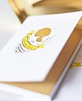 漂亮的proud mary小型画册设计