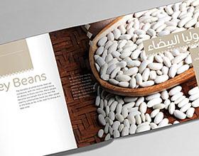 农作物Al Amal品牌目录画册设计欣赏
