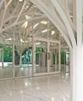 美妙的树状结构建筑