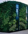 绿树掩映的布鲁塞尔郊外住宅