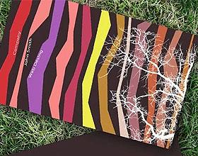 20张免费的彩色名片模板