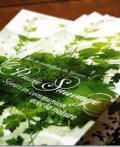 Fabien Barral 花纹印刷品设计
