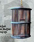 柬埔寨妇女和平平面广告设计