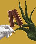 哥斯达黎加Dos Pinos平面广告设计