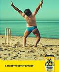 澳大利亚Schweppes饮料平面广告设计