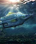 德国海洋守护者协会平面广告设计