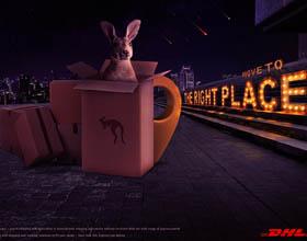 埃及DHL快递平面广告设计