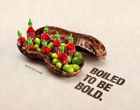 美国Alabama Peanut花生平面广告设计