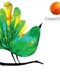CooperVision形象设计