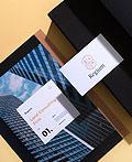 Regium房地产咨询公司品牌视觉设计