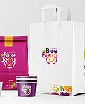 Blue Berry冷冻甜食VI设计