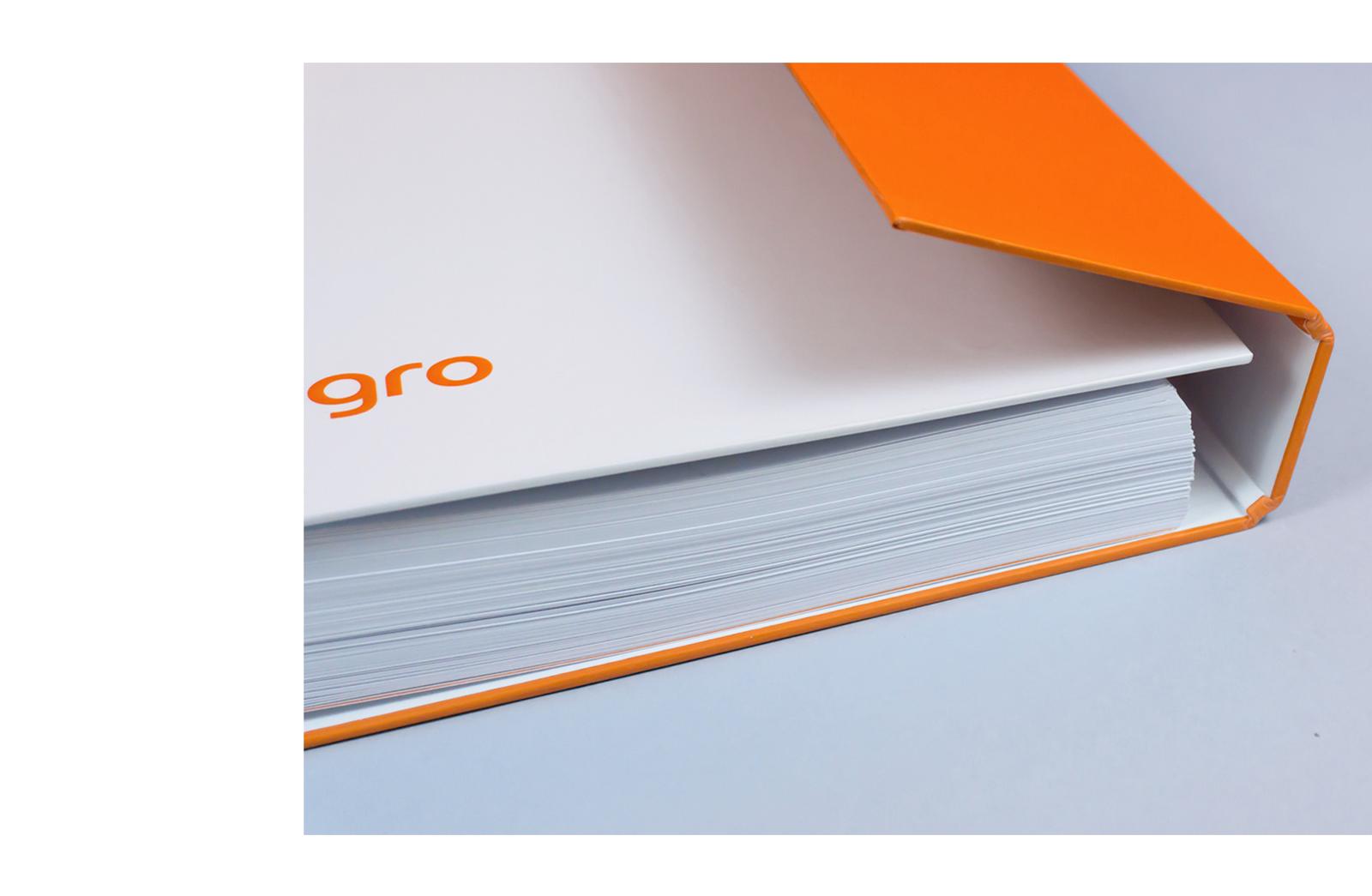 中国设计在线网站_Allegro购物网站品牌VI设计(2)-中国设计在线