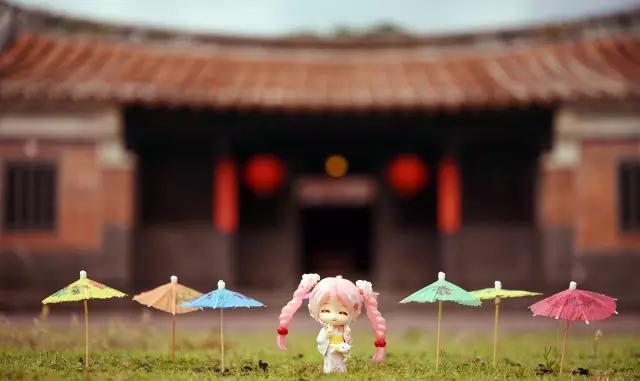 台湾宅宅萌玩具摄影