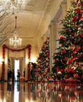 美国白宫的新年圣诞