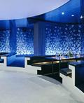 奢华的瑞典孔雀餐馆