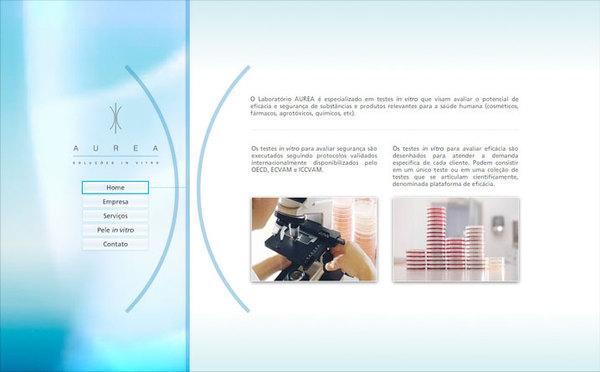 VEA中国设计在线-巴西Ronaldo Oest网页设计作品欣赏