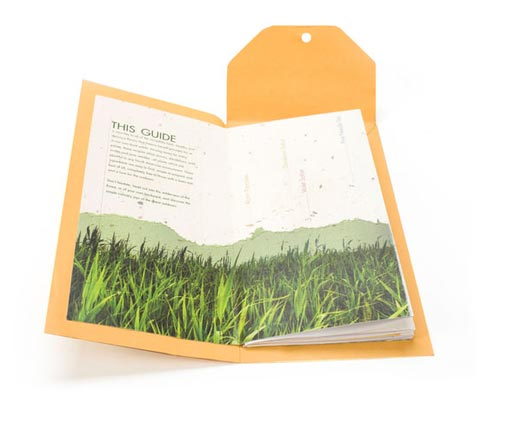 Brigette Indelicato 书籍设计