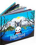 THE PANDA RABBIT书籍设计欣赏